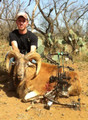 Hunt #7007 Guided Texas Exotics Estate Hunt