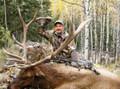 Archery Colorado elk hunt a success.