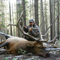 Guided elk hunt in a trophy unit.