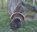 Nebraska turkey.