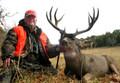 Nice big mule deer buck.