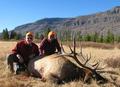 Nice trophy Colorado elk.