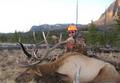 Easy elk hunt.
