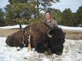Hunting buffalo in Montana