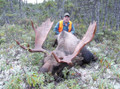 Successful moose hunt in Canada.