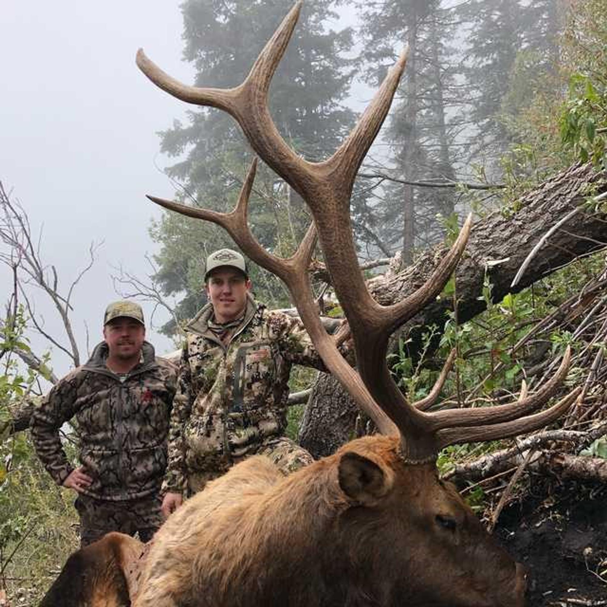 Hunt #5132 DIY/Guided Deer/Elk Wilderness/Forrest Camps