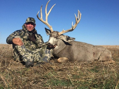 100,000 acres mule deer hunt