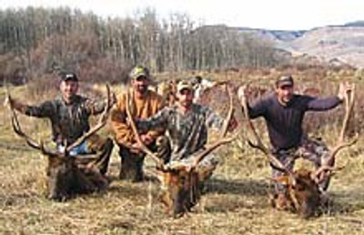 Successful elk camp