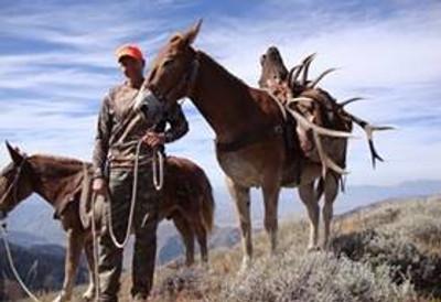Idaho pack-in trip for a successful elk hunt.