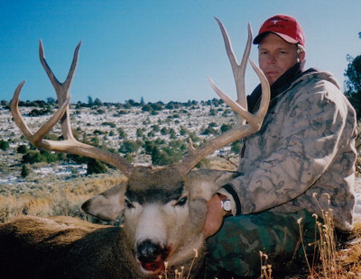 Another big open country mule deer.