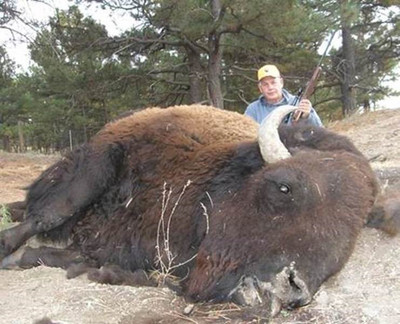 Trophy 10 year old buffalo.