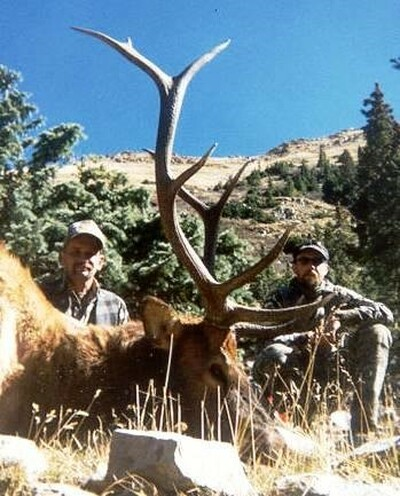 "Trophy elk up to 350""+."