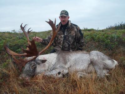 Woodland caribou hunt