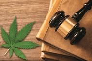 Hemp and CBD Law