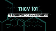 What is THC-V?