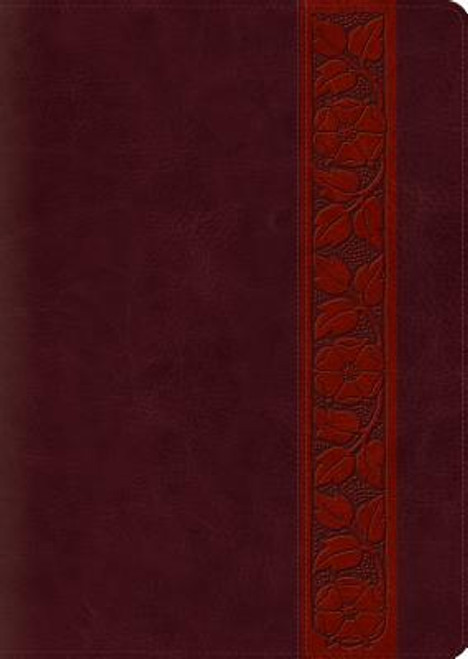Study Bible-ESV-Large Print Trellis Design