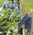 Irrigatia C24L Automatic Solar Powered Watering System