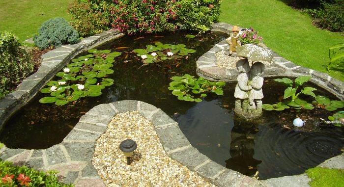 customer-pond.jpg