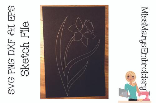 Sketch Daffodil