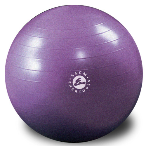 Exertools Burst Resistant Gymball 55cm - Mulberry