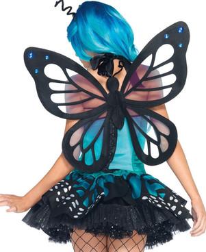 Swallowtail Butterfly (85001)