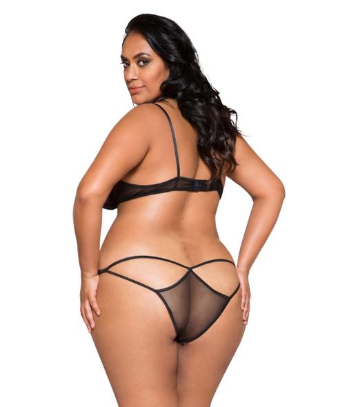 Plus Size Lingerie | LI267X, Lace and Mesh Bra Set back view