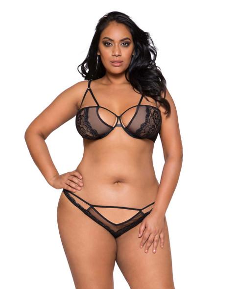 Plus Size Lingerie | LI267X, Lace and Mesh Bra Set
