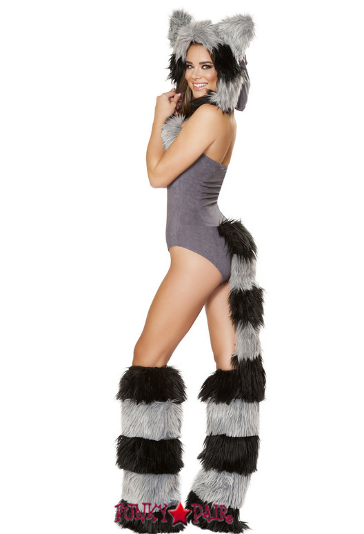 R-4719, Furry Raccoon