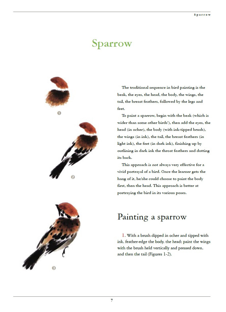 Birds and Insects