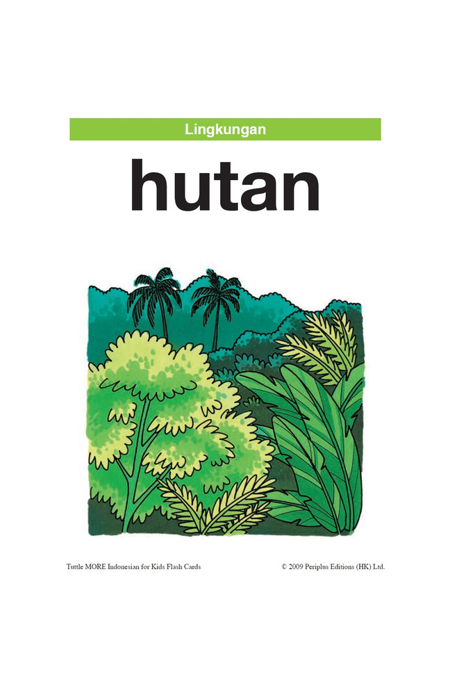 Tuttle More Indonesian for Kids Flash Cards Kit