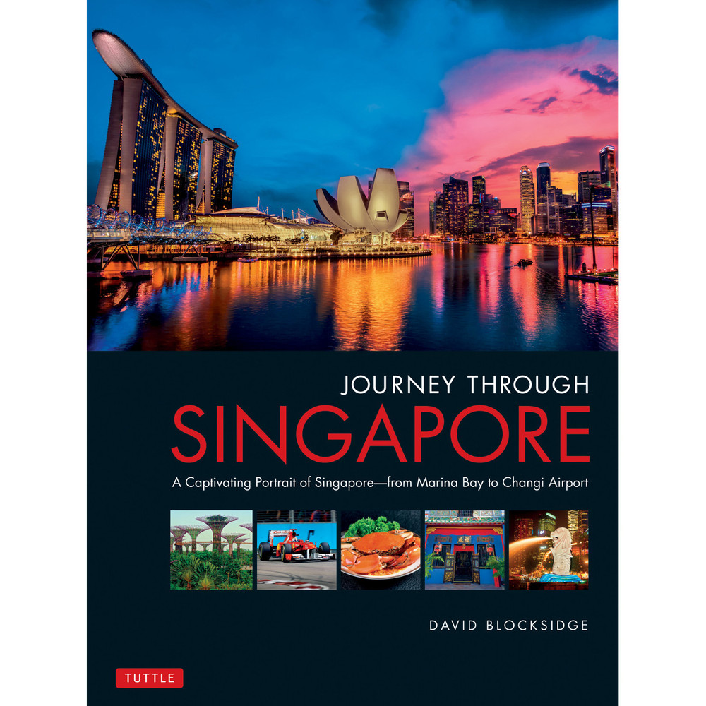 Journey Through Singapore