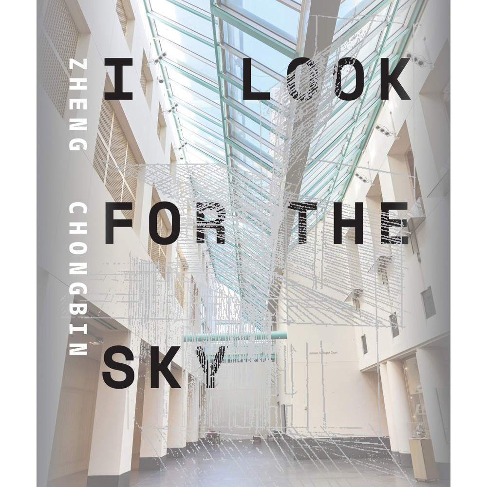 Zheng Chongbin, I Look for the Sky