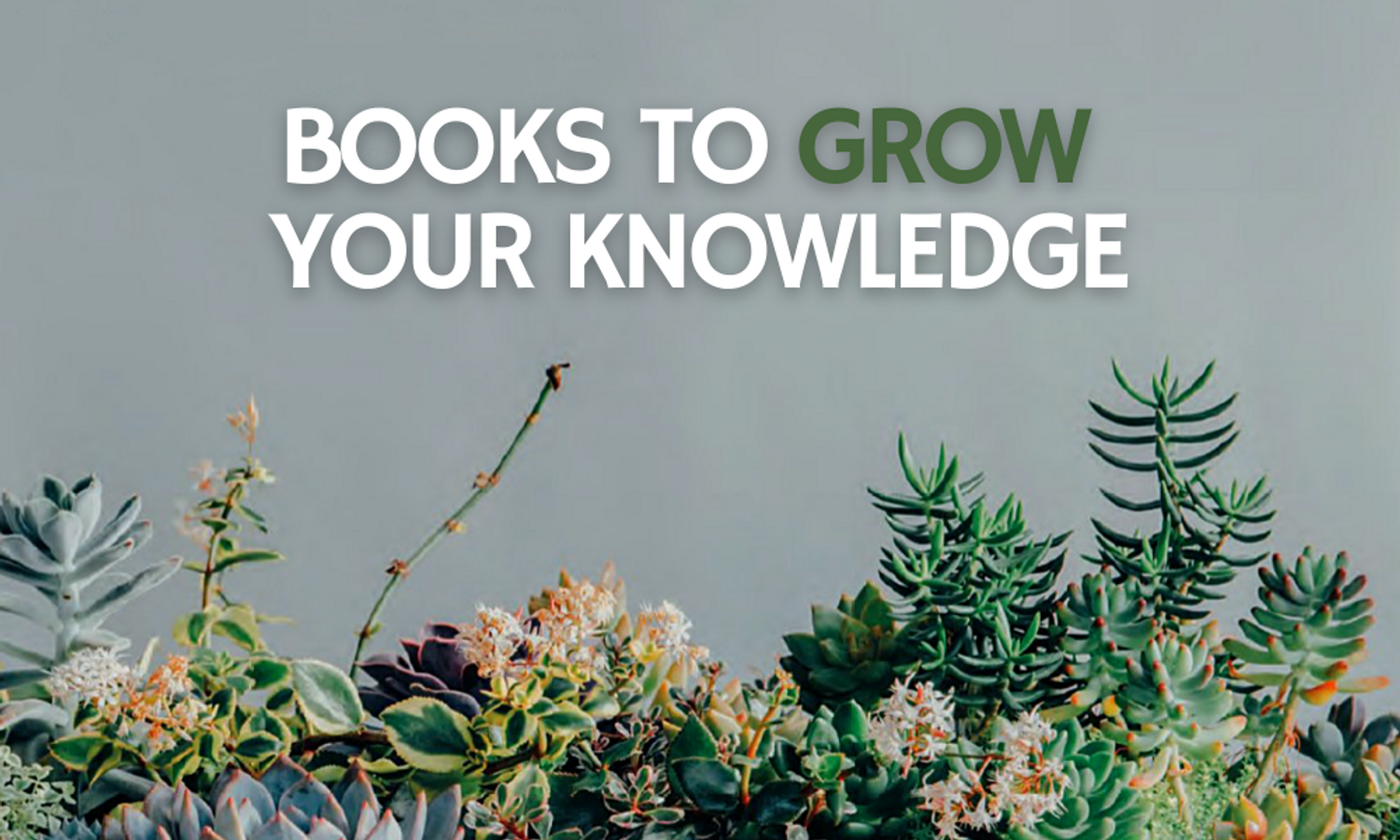 Books to Grow Your Knowledge