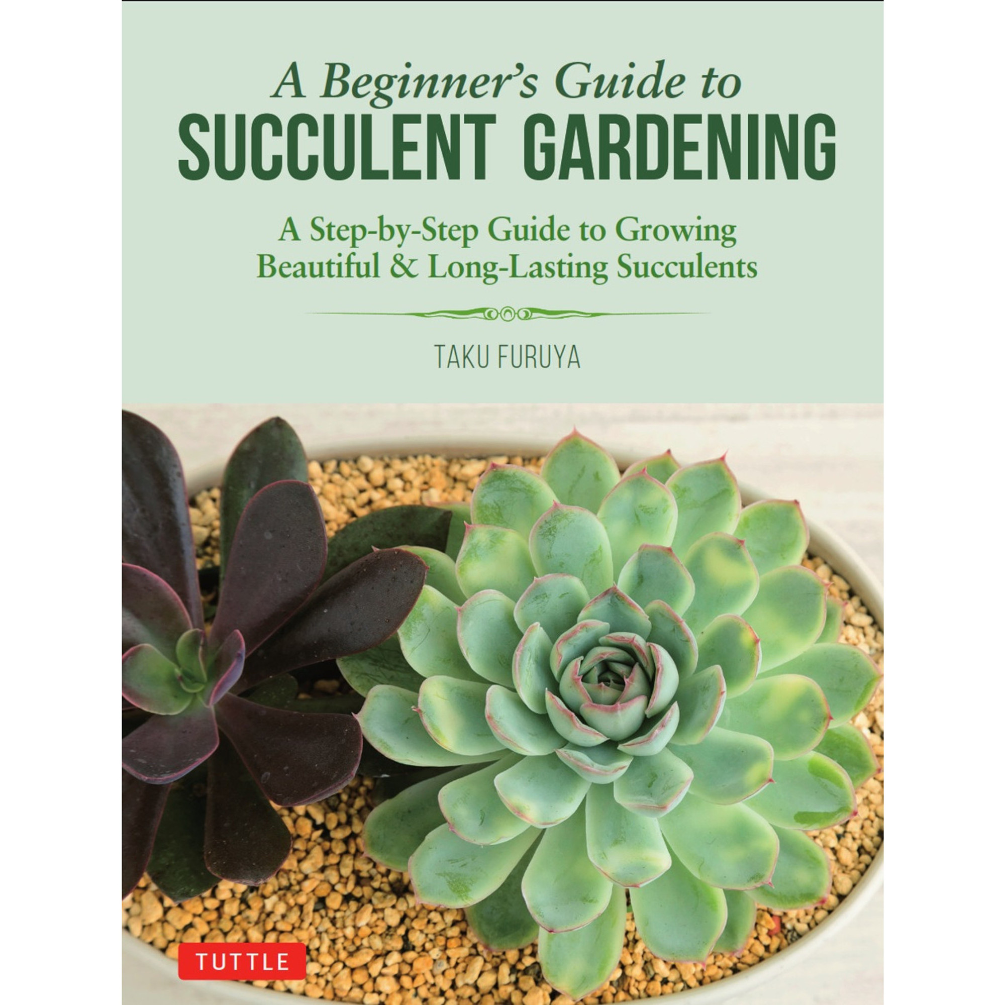A Beginner S Guide To Succulent Gardening Tuttle Publishing