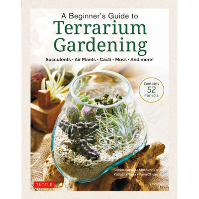 A Beginner's Guide to Terrarium Gardening