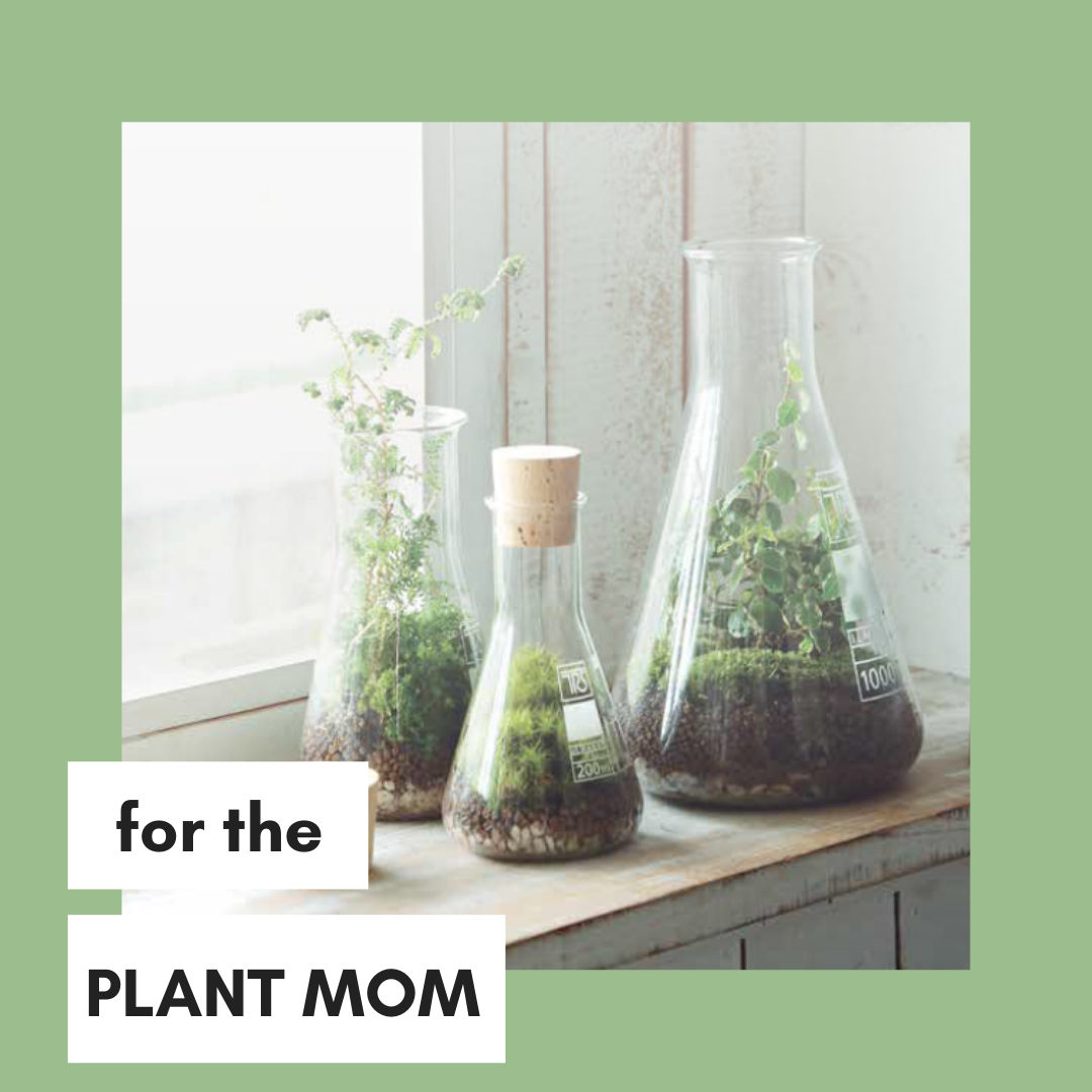plant-mom.png