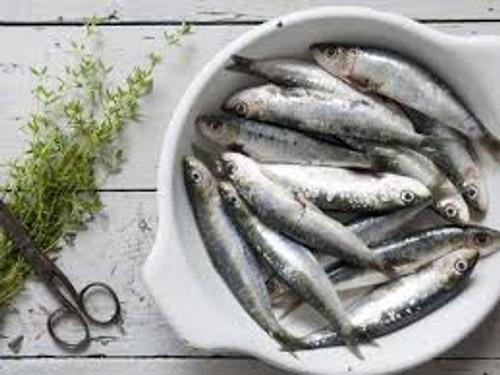 Sardines - Small
