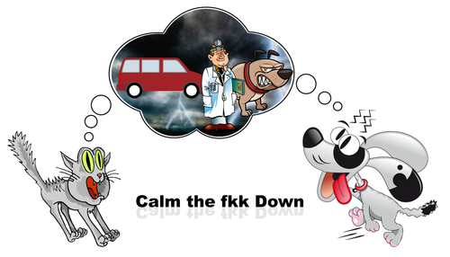 CTFD - Calm the Fkk Down