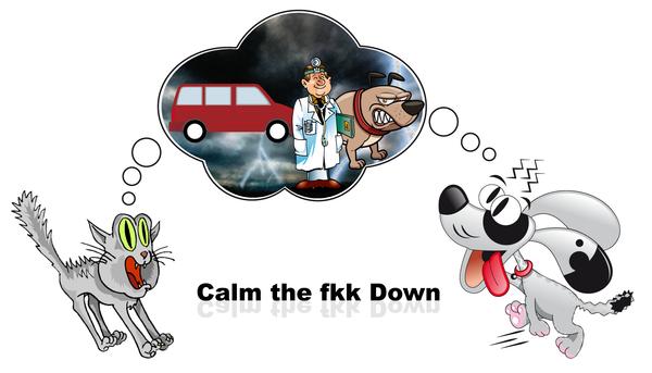 CTFD - Calm the Fkk Down