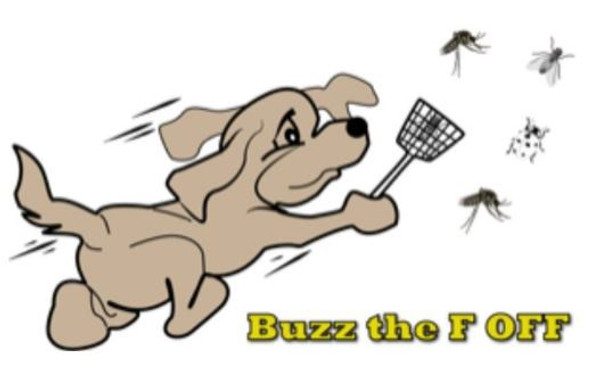 Buzz the Fkk Off