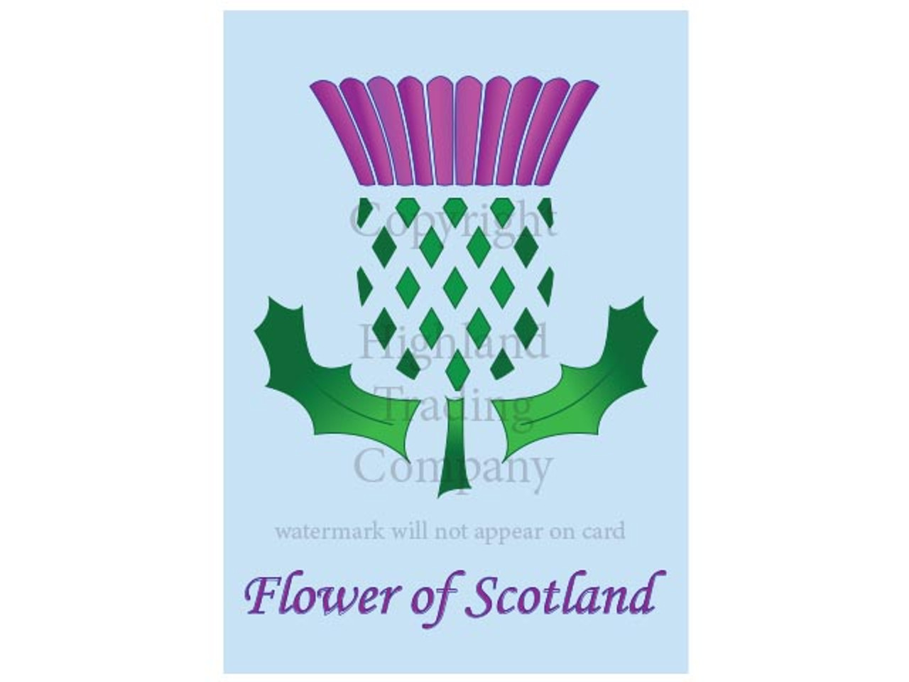 Scottish Thistle Greeting Card