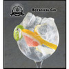 Botanical Gin-VT