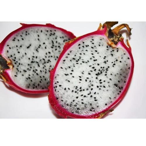 Dragon Fruit-SC