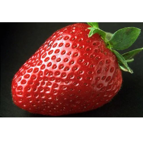 Strawberry-SC