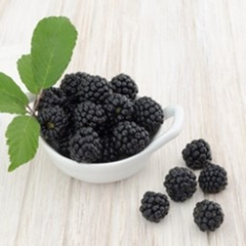 Boysenberry-TFA (Bulk/Restricted Shipping)
