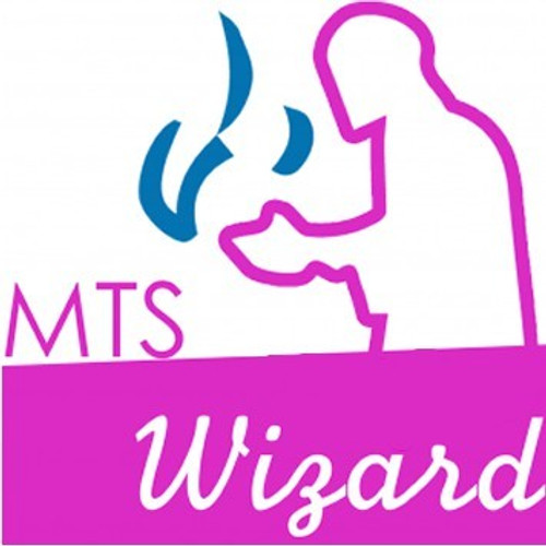 MTS Wizard-FA-Gallon