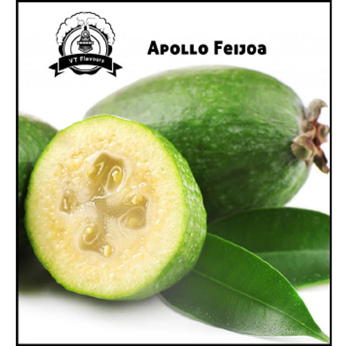 Apollo Feijoa-VT