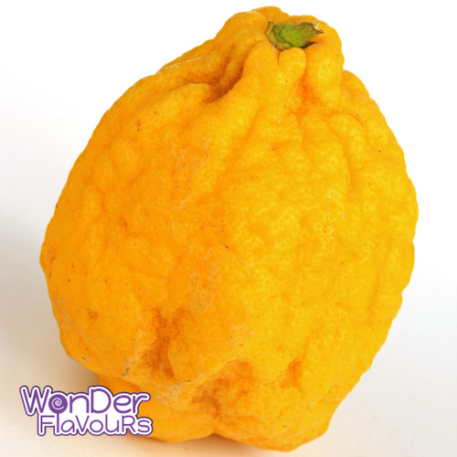Cedro (Fruit)-SC-WF
