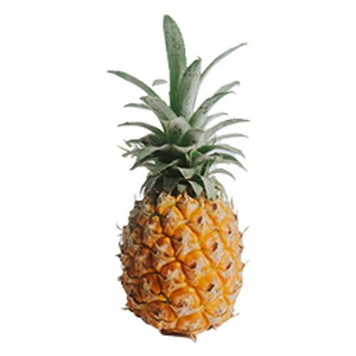 Costa Rica Pineapple-FA