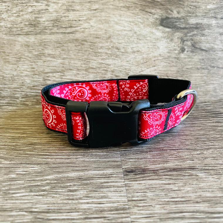 Collar - Printed Pets - Red Paisley